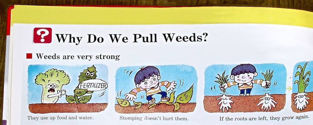 why we have to pull weeds