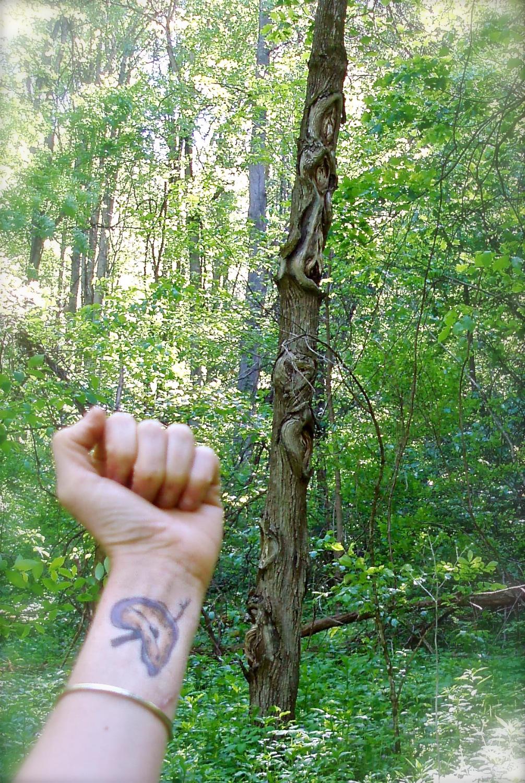 yoni tree, 2010